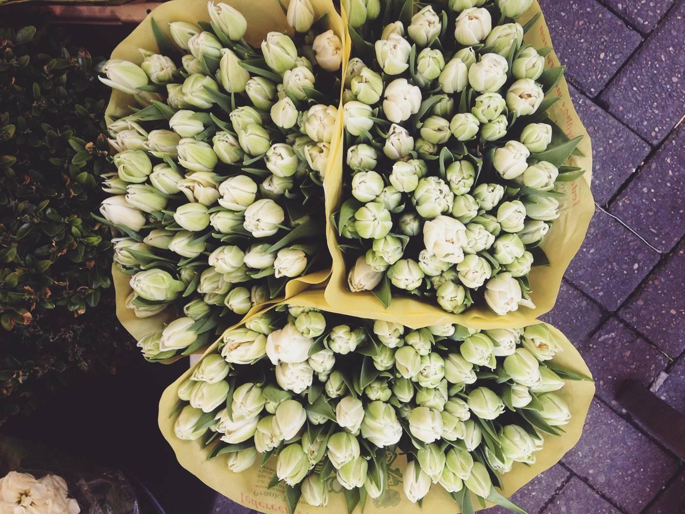 tulip_market